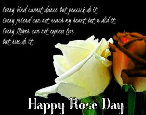 red flower Happy Rose Day Quotes photo