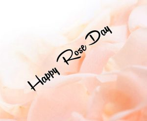 white flower Happy Rose Day wallpaper