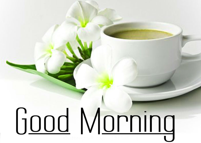 beautiful white cup Good Morning pics