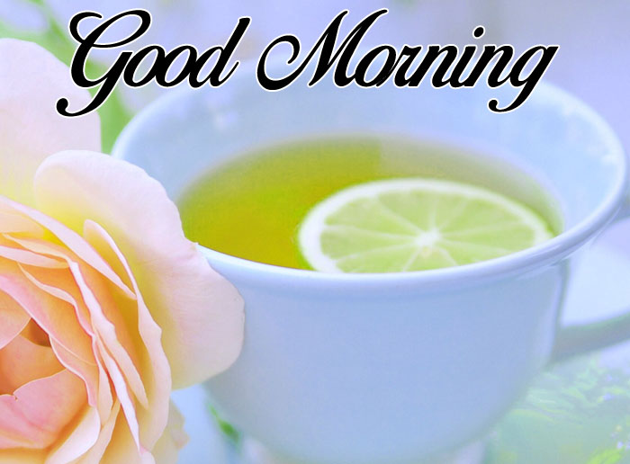 cup Good Morning flower images