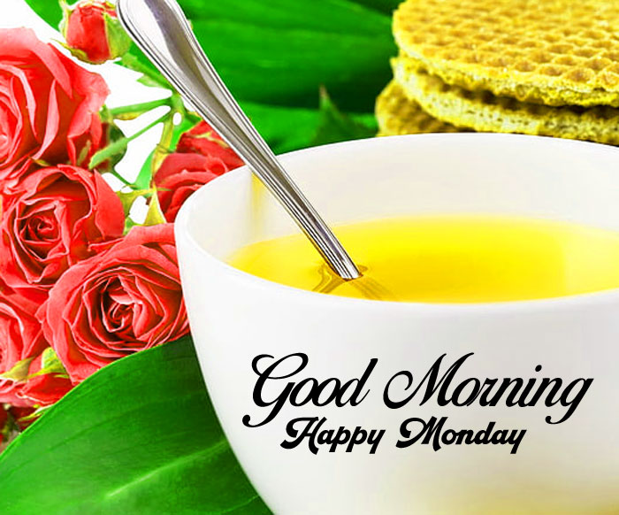 cup flower Good Morning Happy monday pics