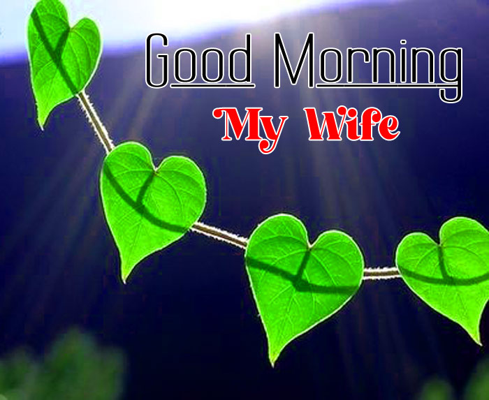 green leaf Good Morning My Wife images hd