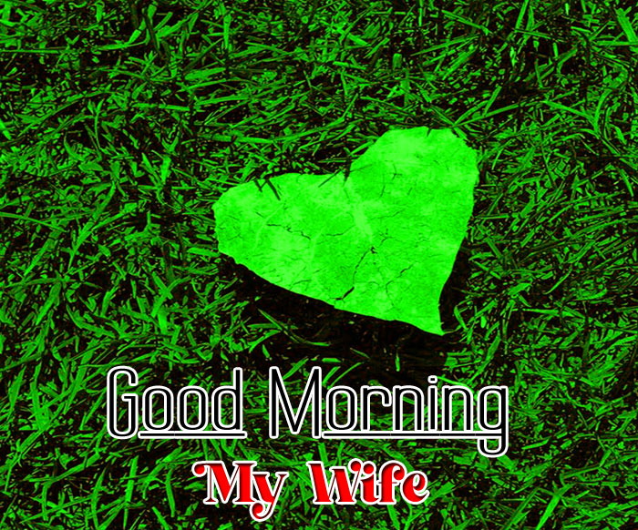 green leaf Good Morning My Wife images