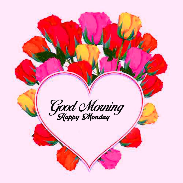latest red flower Good Morning Happy monday pics hd