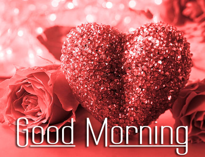 love Good Morning flower images hd