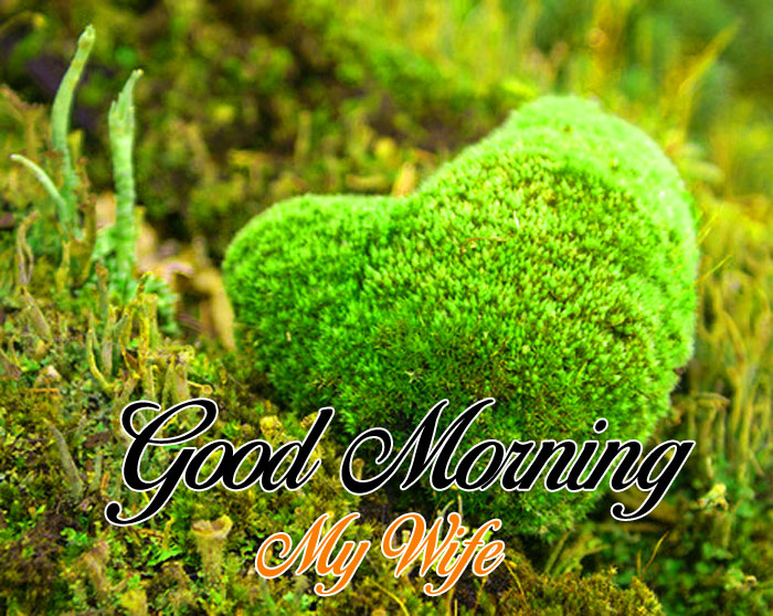 nice green heart Good Morning My Wife images hd