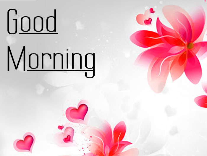 res flower Good Morning hd wallpaper