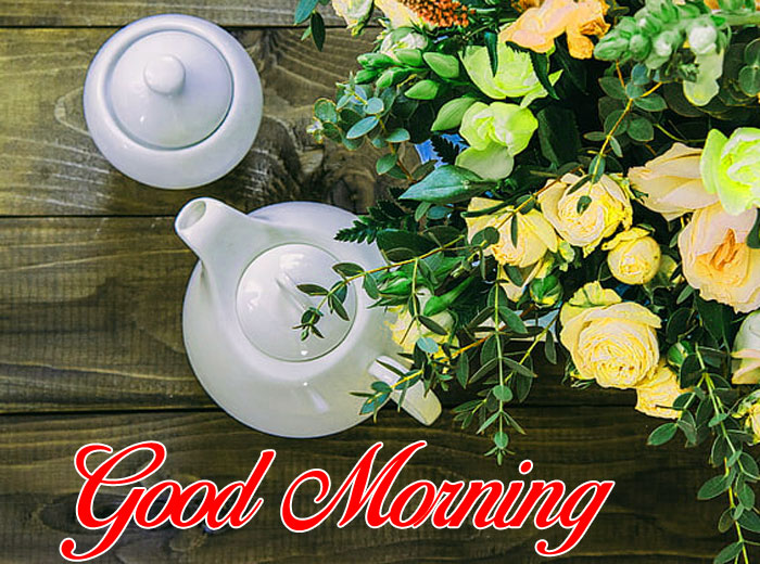 white cup flower Good Morning pics hd